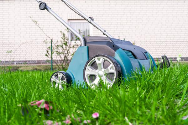 Scarificateur avant semis pelouse
