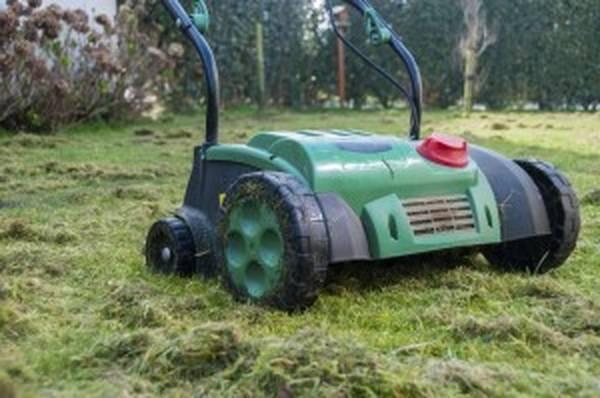 Scarificateur tracteur tondeuse occasion